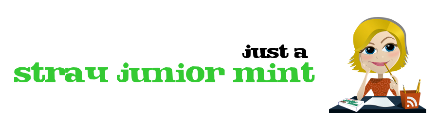 Stray Junior Mint header image